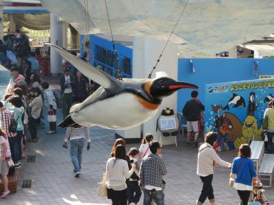 飛ぶペンギン
