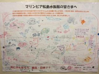 松島水族館応援