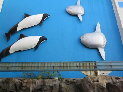 松島水族館といえば