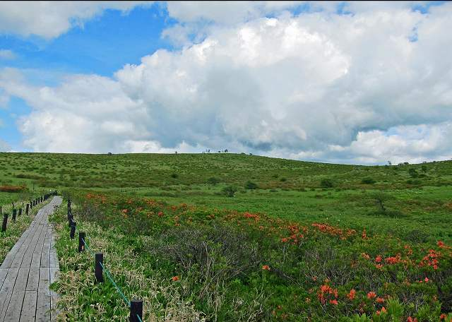 車山湿原風景