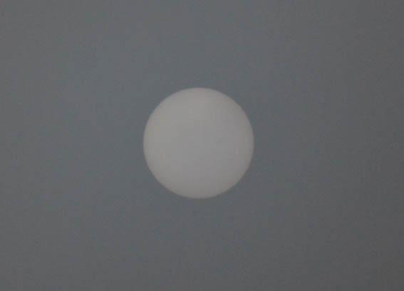 sun_20150116_DSC_9781.jpg