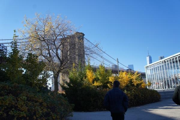 brooklyn bridge park3