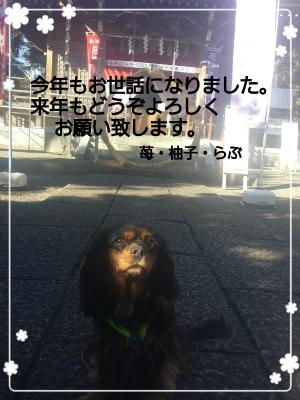 2014-12-27-21-00-57_deco.jpg