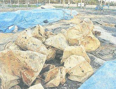 嘉手納基地から掘り出されたドラム缶13年6月