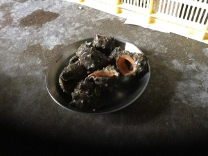 「にし」という巻貝