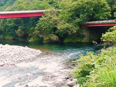 ゆらっき日記 根尾川の上流で川...