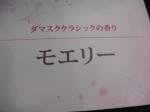 切花 (7)