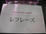 切花 (10)