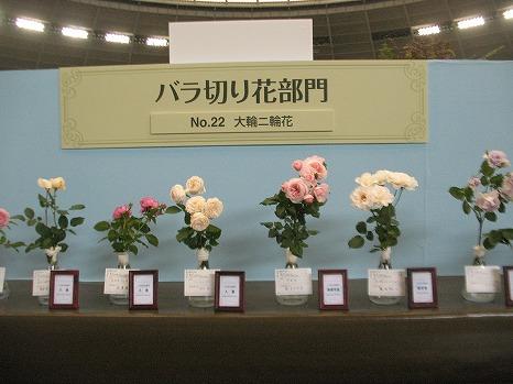 切花 (3)