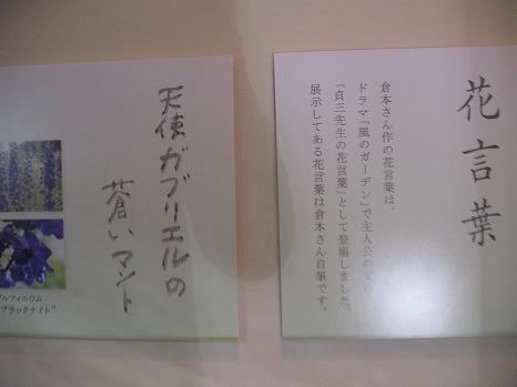 風のガーデン (1)
