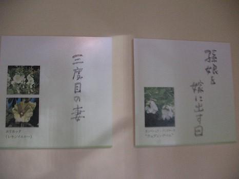 風のガーデン (2)