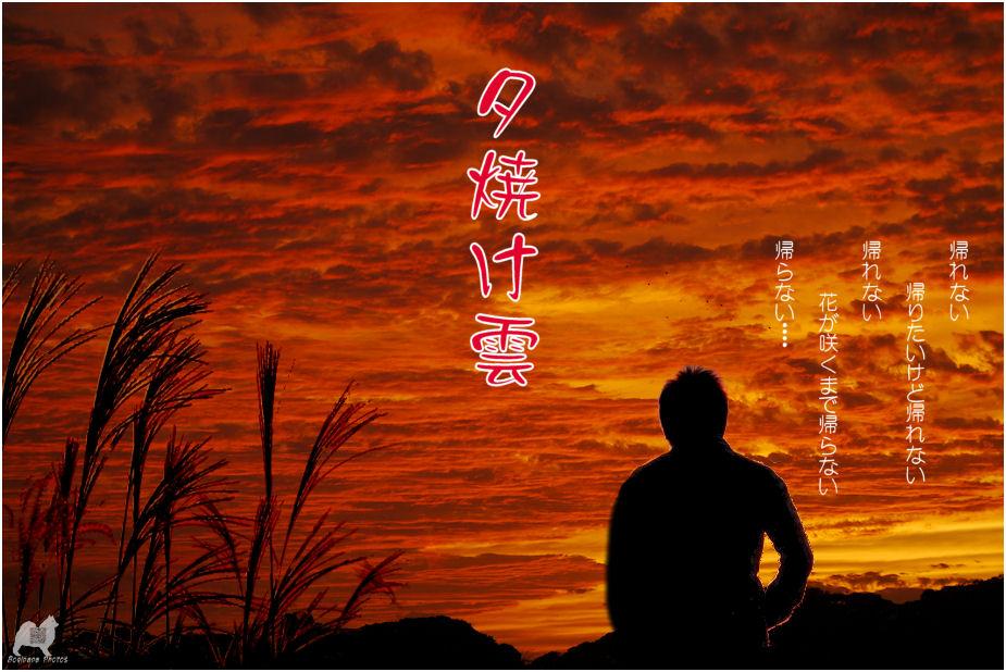 夕焼け雲♪
