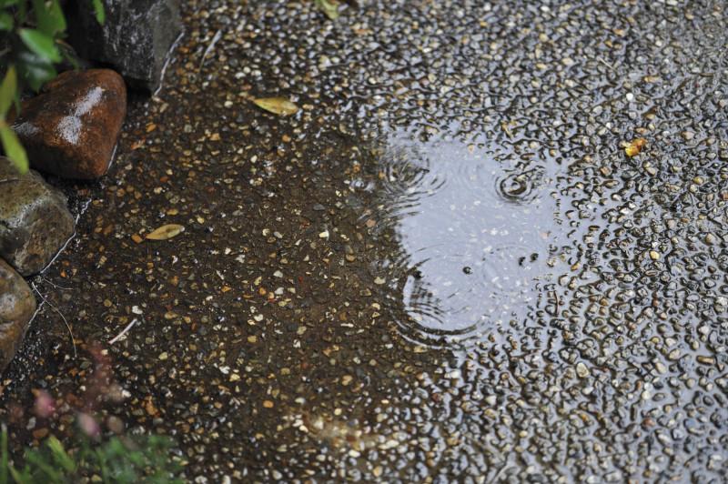 雨の日の撮影