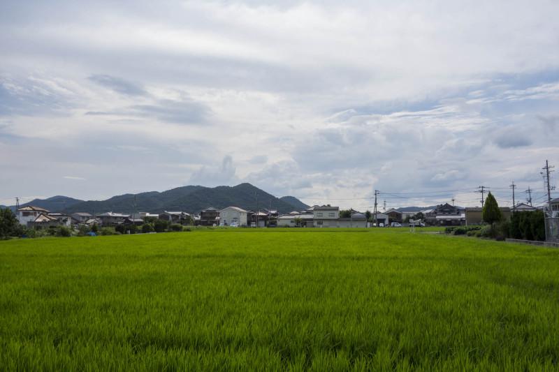 日本一の城
