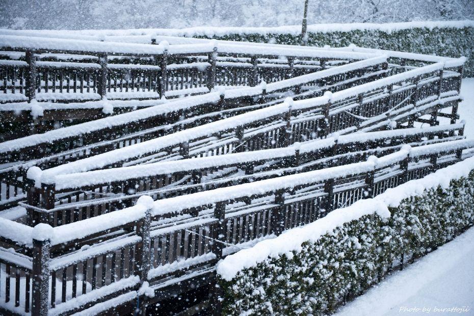 2014.12.06雪の金沢城公園9
