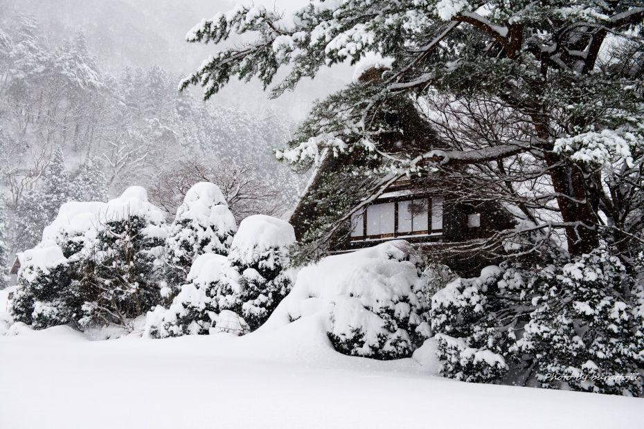 2014.12.18和田家付近3