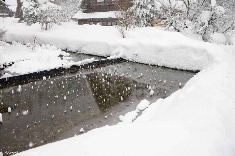 2014.12.18明善寺付近3