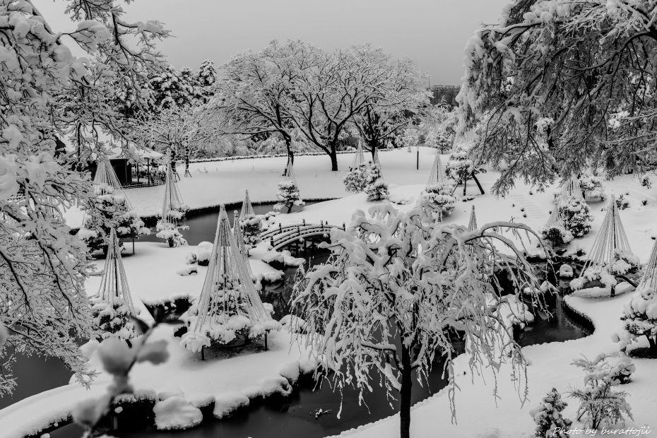 2015.01.01金沢城公園12