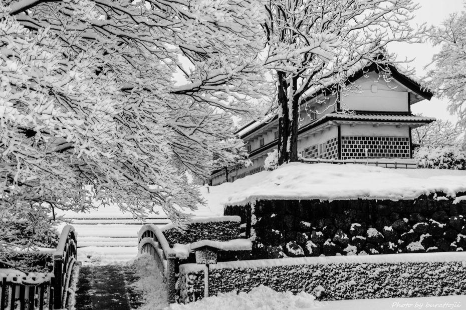 2015.01.01金沢城公園11