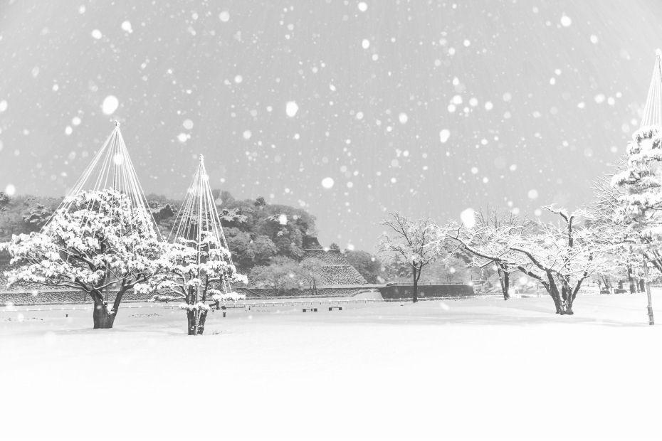 2015.01.01金沢城公園3
