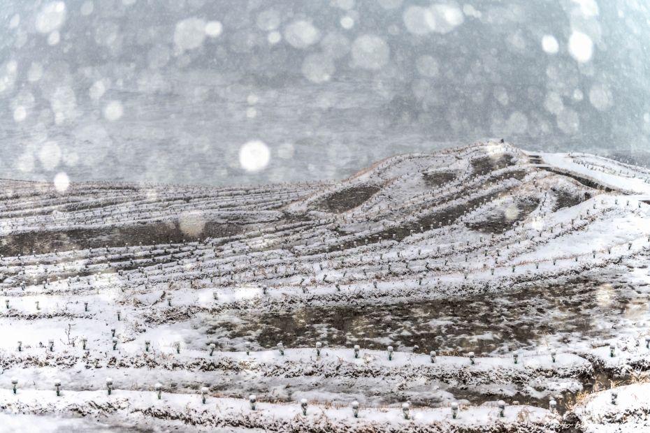 2015.01.02白米千枚田の雪景色3