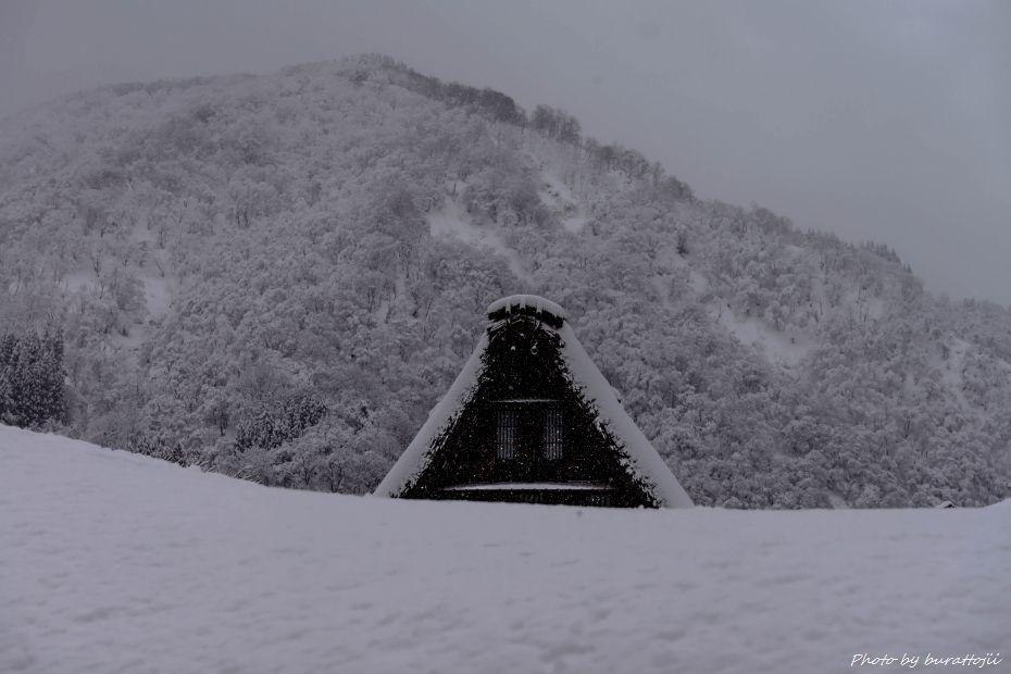 2015.02.01五箇山菅沼7