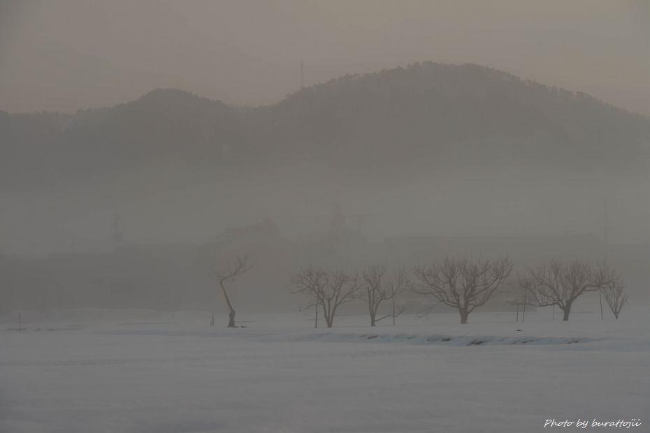 2015.02.07霧の大野城4