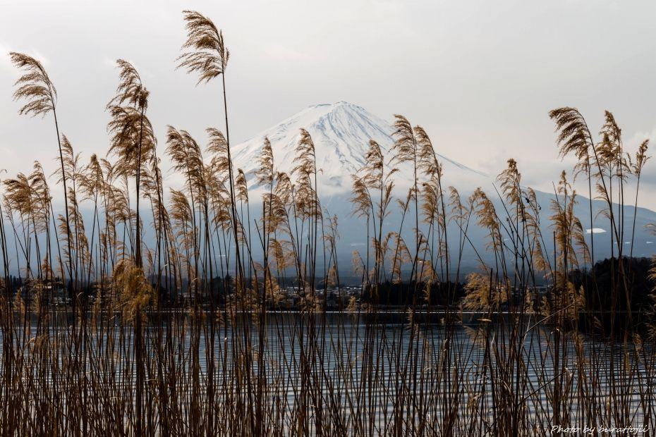 2015.03.03河口湖7