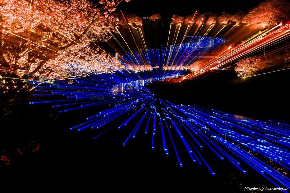 2015.03.05夜桜☆流れ星12