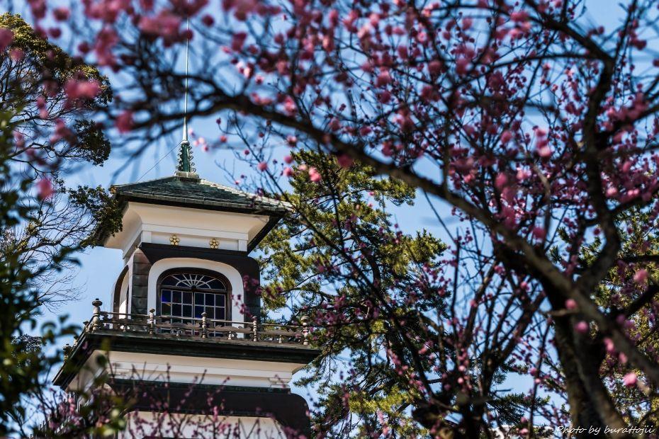 2015.03.28尾山神社1