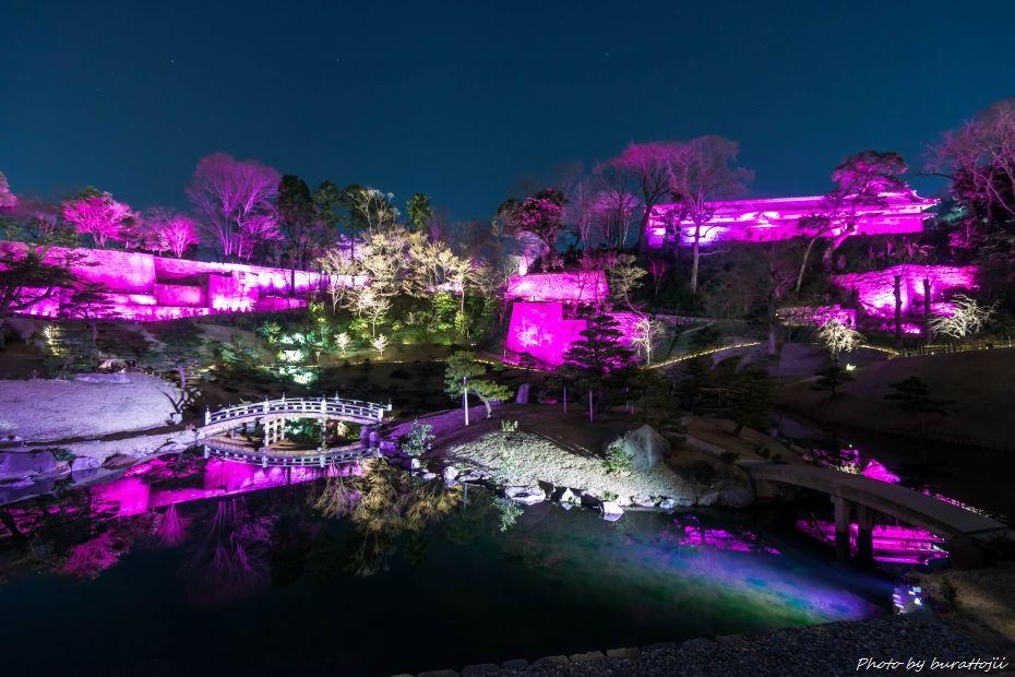 2015.03.28玉泉院丸庭園ライトアップ7