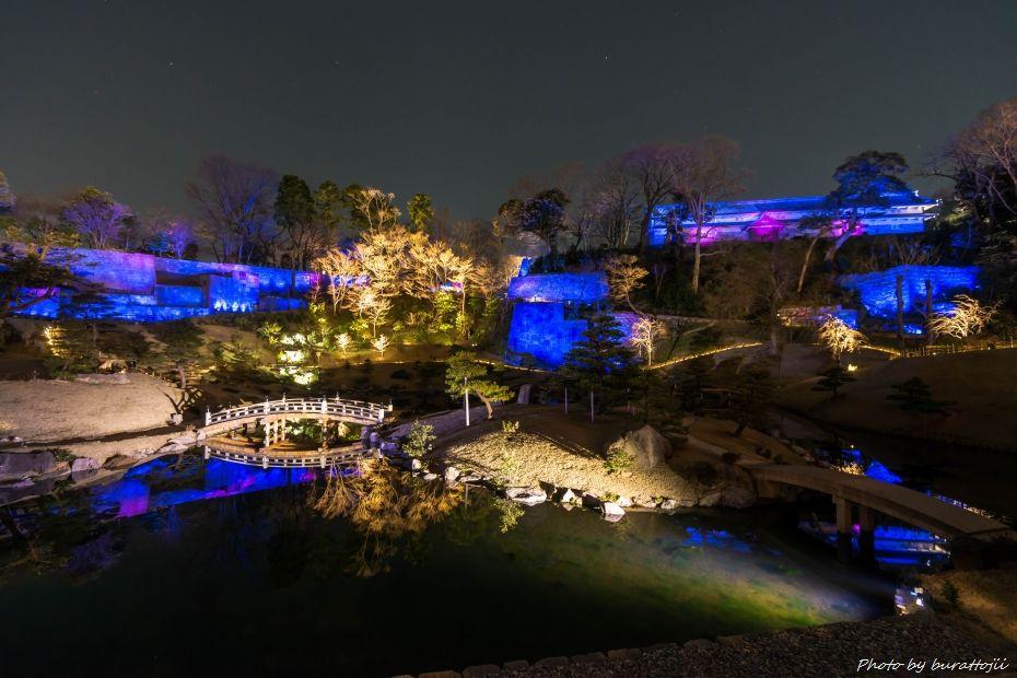2015.03.28玉泉院丸庭園ライトアップ6