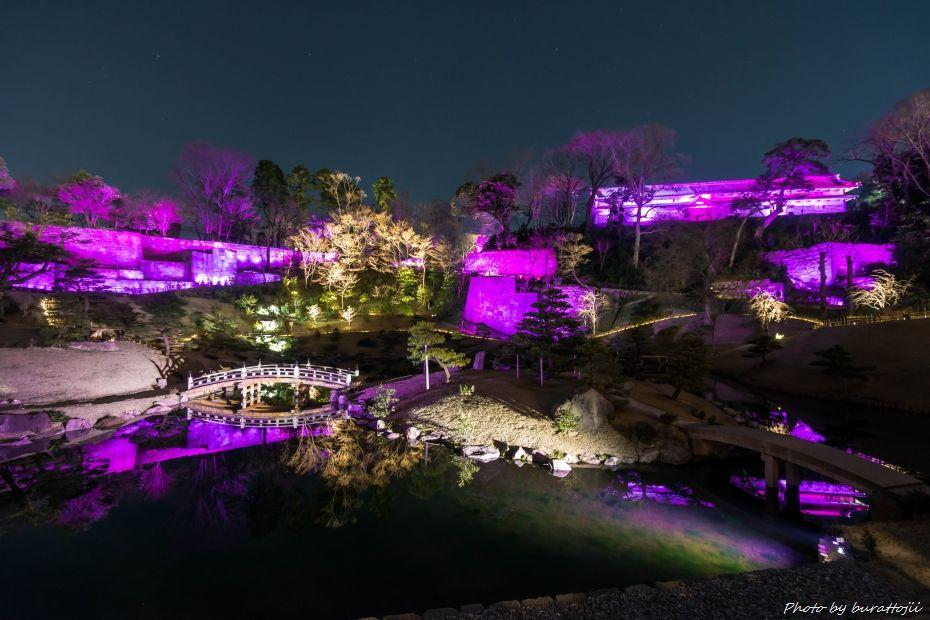 2015.03.28玉泉院丸庭園ライトアップ5