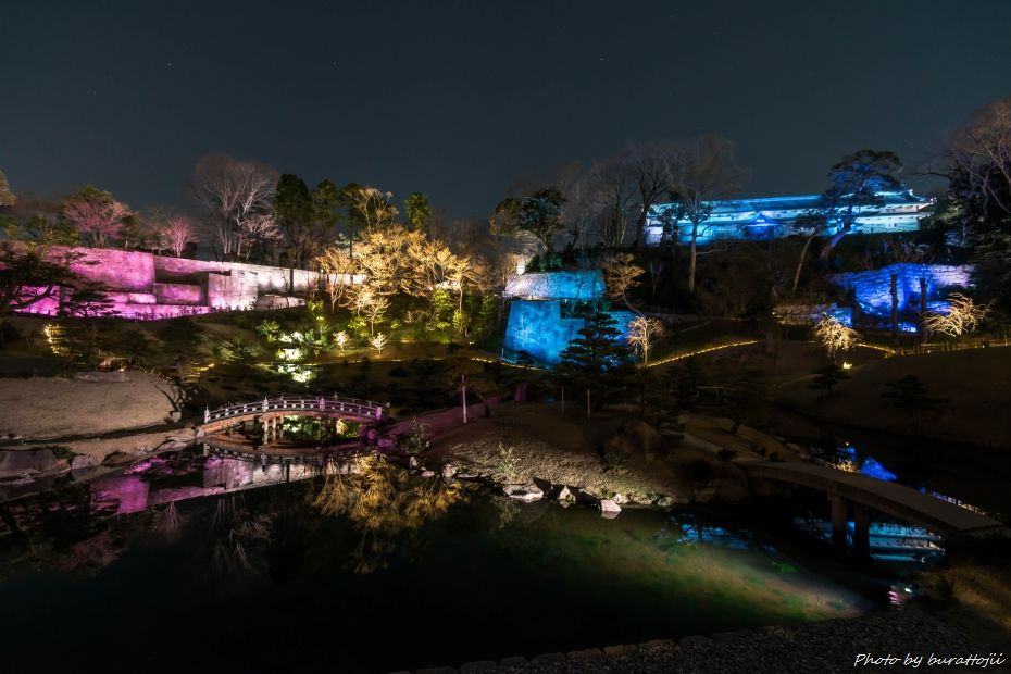 2015.03.28玉泉院丸庭園ライトアップ4