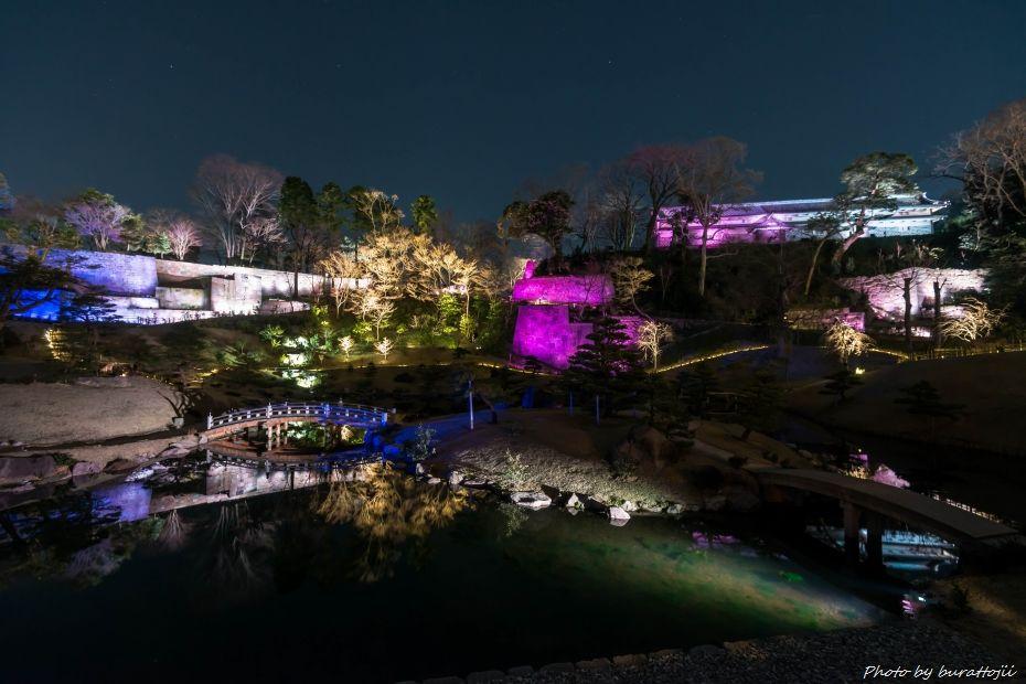 2015.03.28玉泉院丸庭園ライトアップ3