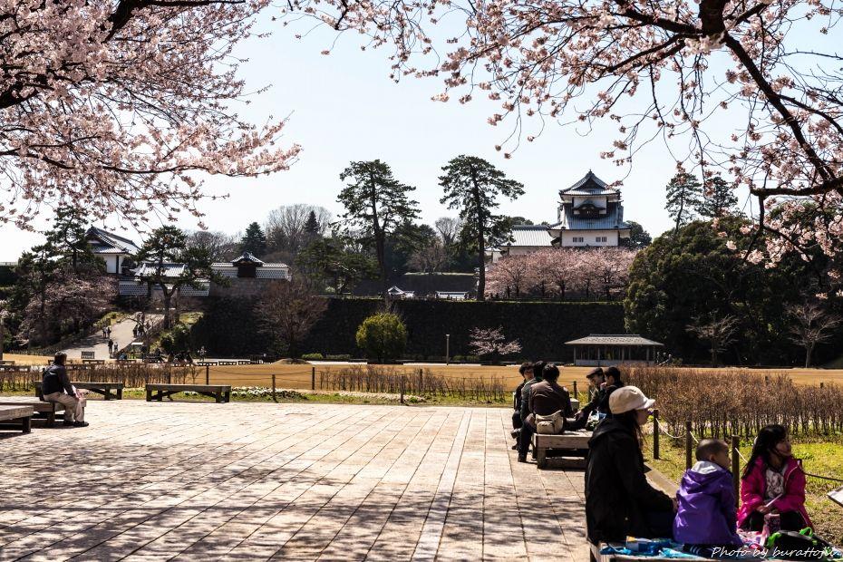 2015.04.04金沢城の桜16