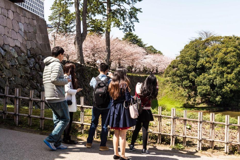 2015.04.04金沢城の桜14