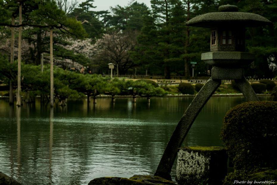 2015.04.04兼六園の緑鮮やか7
