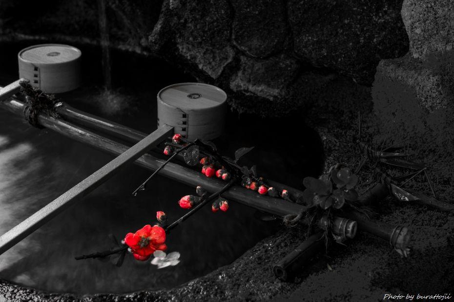 2015.04.05雨のひがし茶屋街9