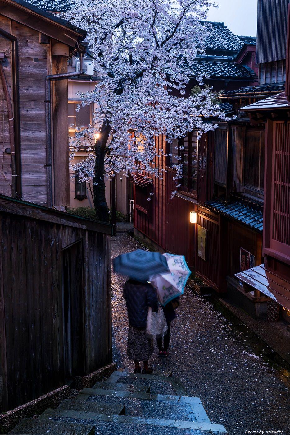 2015.04.05雨の主計町2