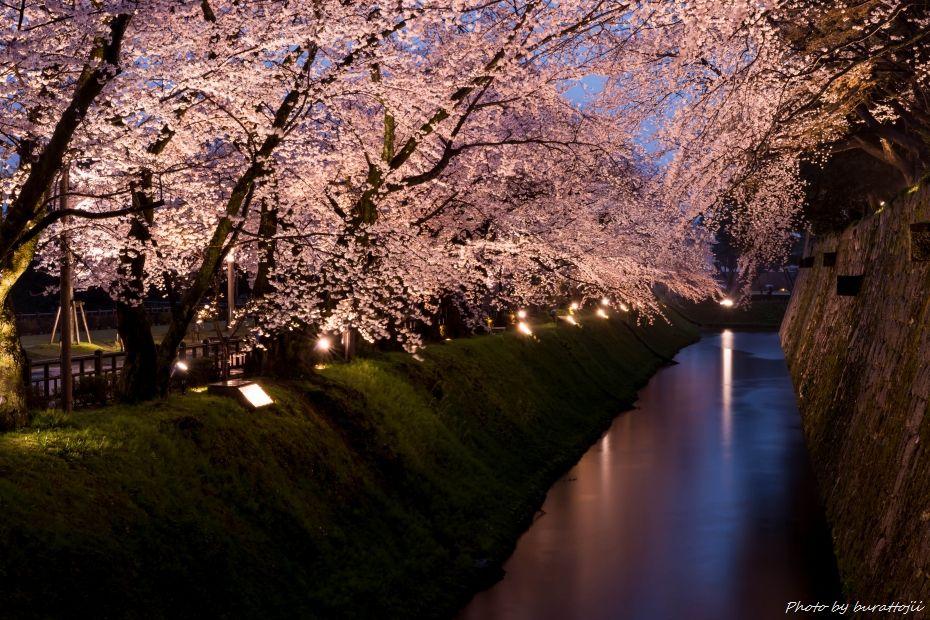 2015.04.06雨の金沢城8