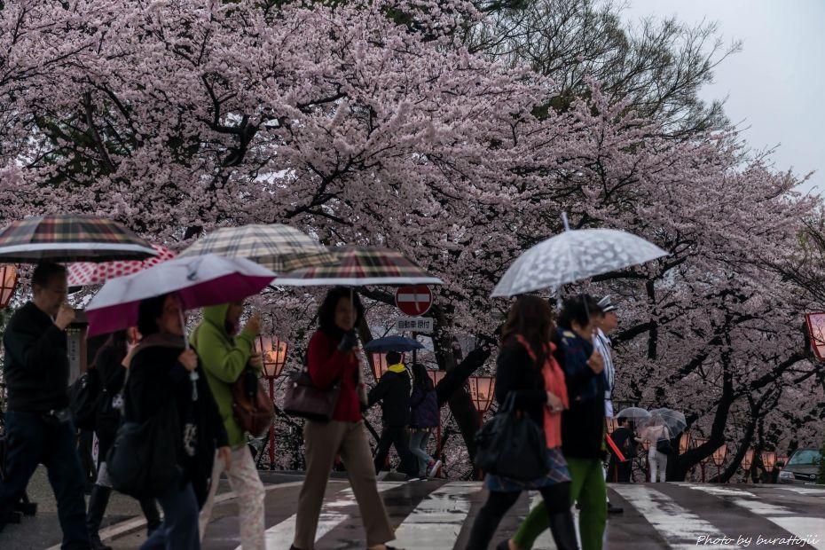 2015.04.06雨の金沢城3