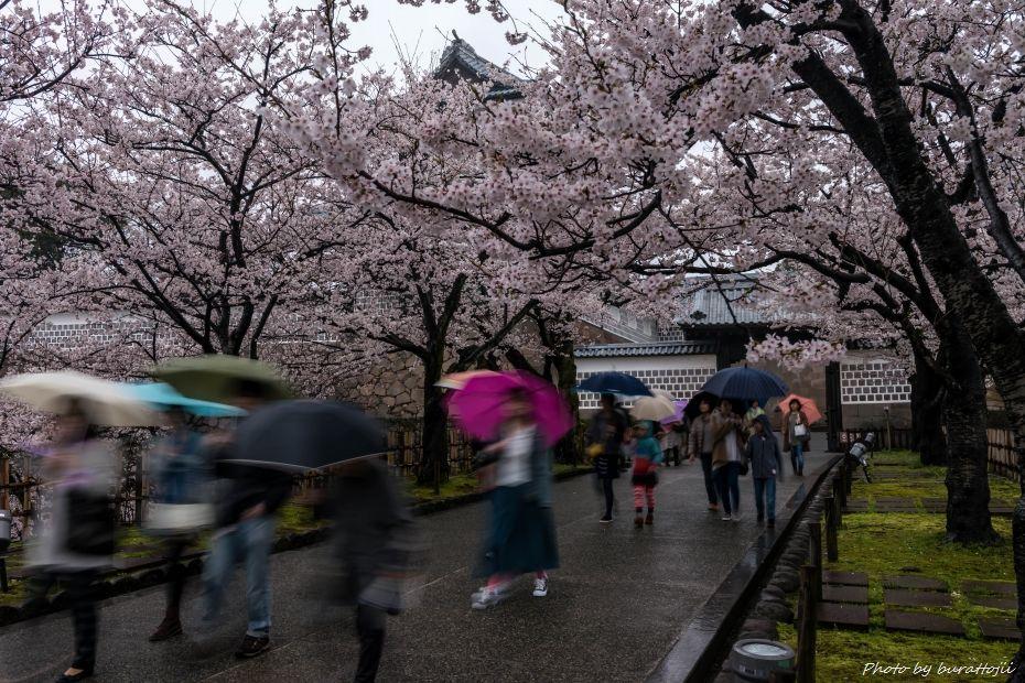 2015.04.06雨の金沢城4
