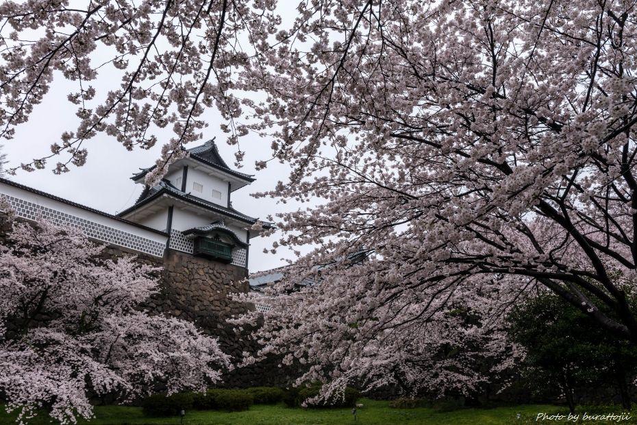 2015.04.06雨の金沢城1