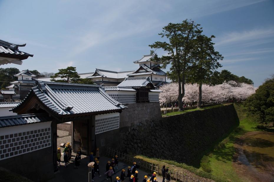 2015.04.09金沢城の桜9