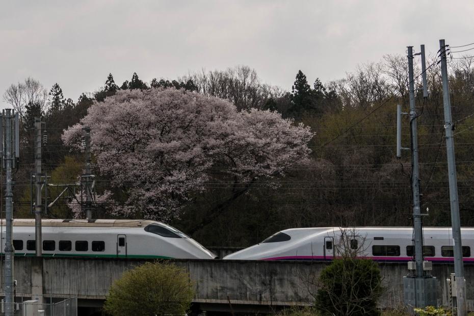 14.2015.04.16東北新幹線