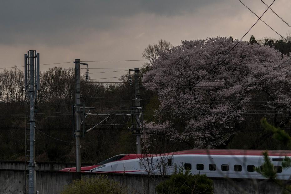 13.2015.04.16東北新幹線