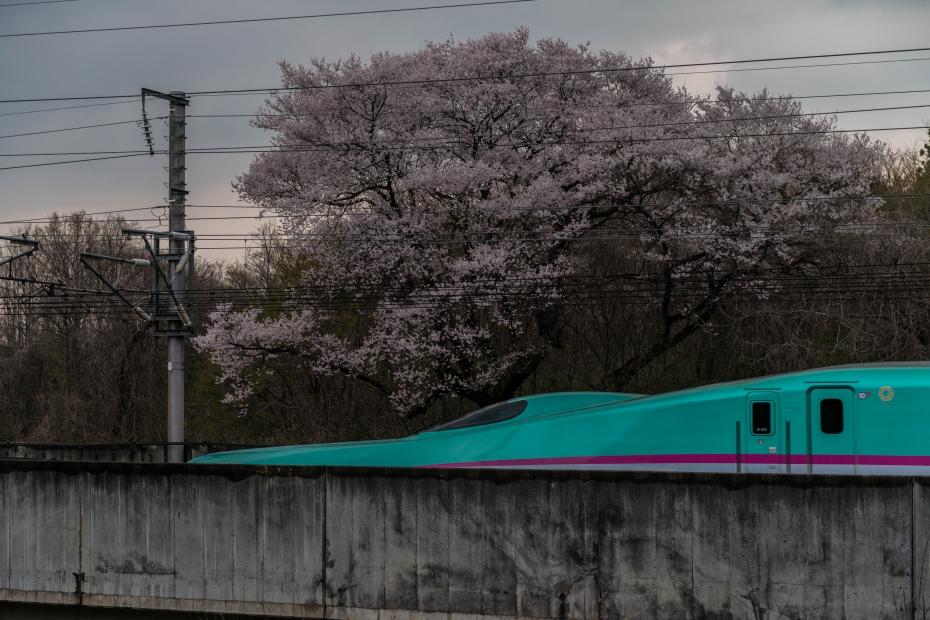 12.2015.04.16東北新幹線