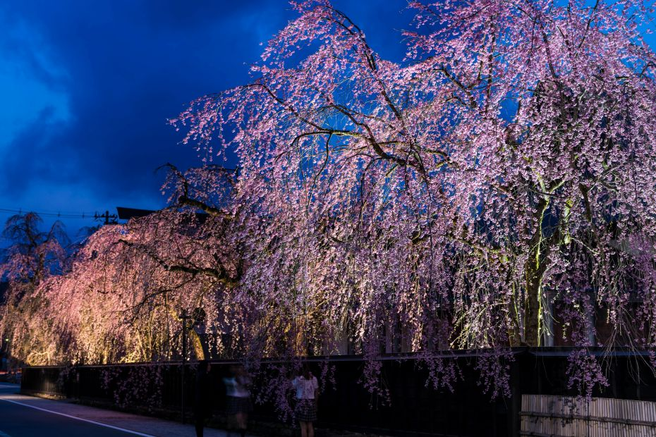 2015.04.18角館夜景2