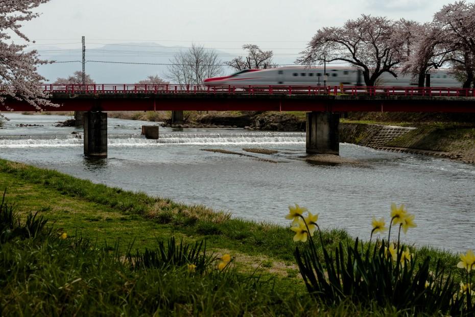 2015.04.19桜と秋田新幹線6